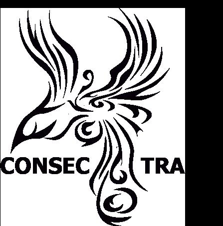 consectra.com.tr